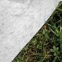 Piscine Toi Canarias 550x120 8886